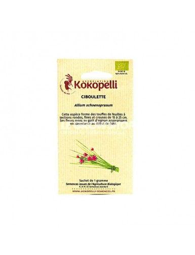 Semence biologique Ciboulette Allium Schoenoprasum
