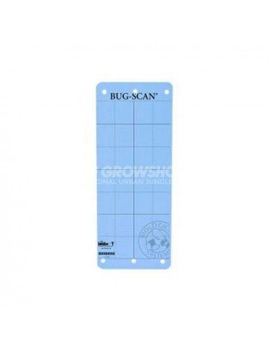 Colle mouche bleue Bug Scan Biobest
