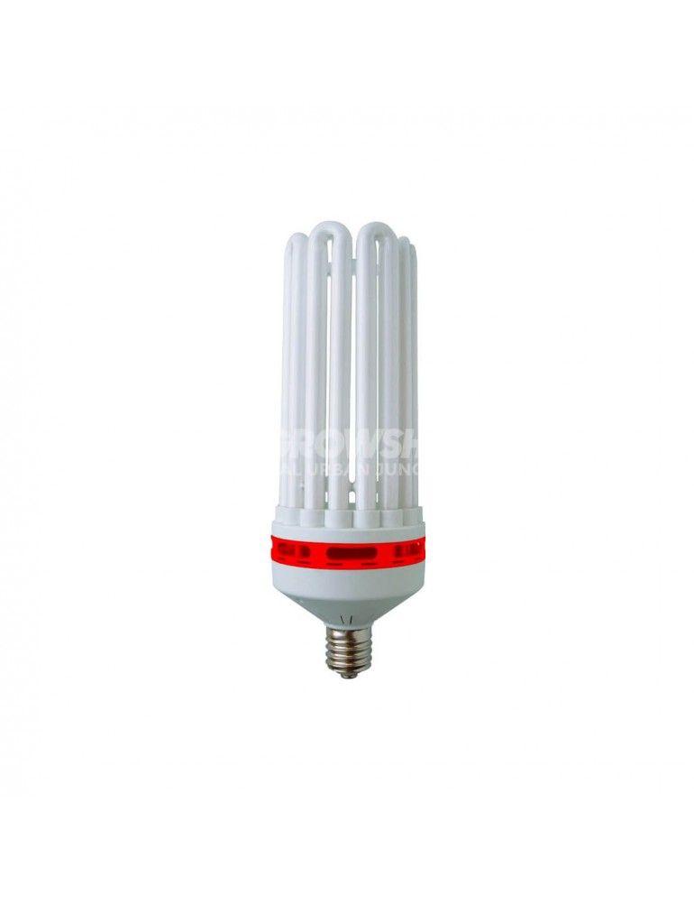Ampoule CFL 250W Croissance de Pure Light