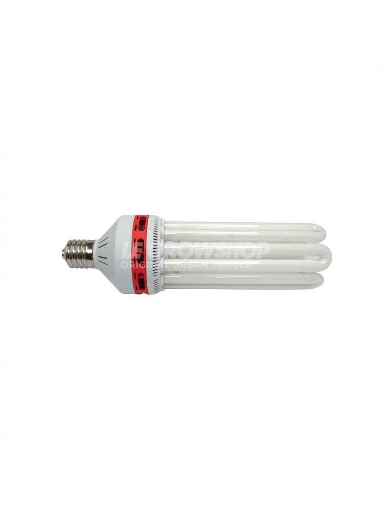 Ampoule CFL 150W Floraison de Pure Light