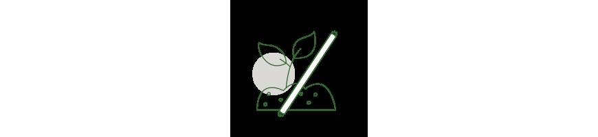 Eclairage semis et boutures - Néons - GrowShop Urban Jungle